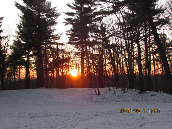 Winter Sunset, Gatineau Parc, Quebec